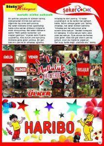 sayfa15 copy