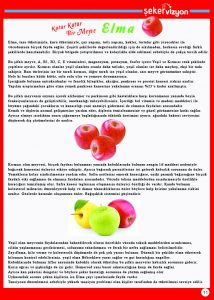 sayfa11 copy